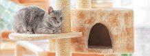 Cat House Image